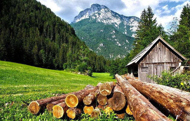 wypoczynek w Borach Tucholskich